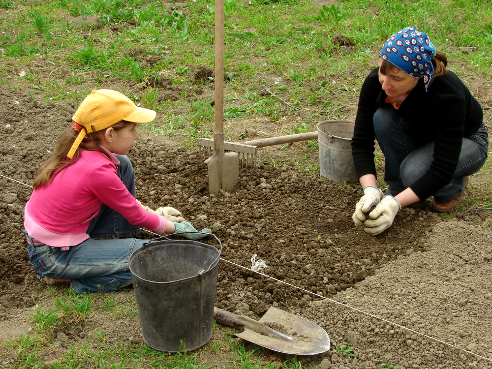 how to prepare the soil for your garden