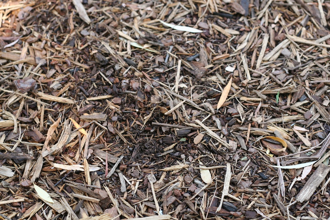 Mulch Your Garden