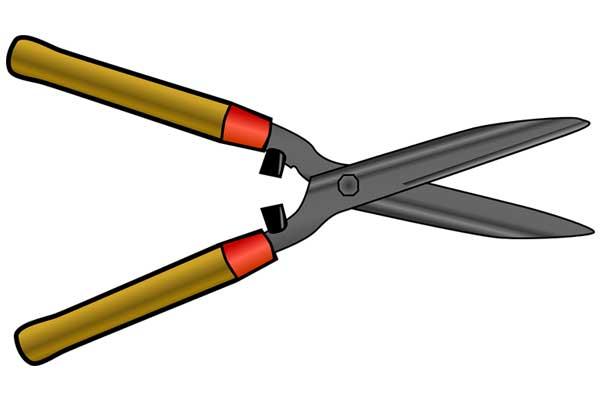 Pruners gardening tools
