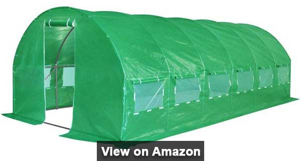 Quictent 20 stakes Best Greenhouse for Large Plants