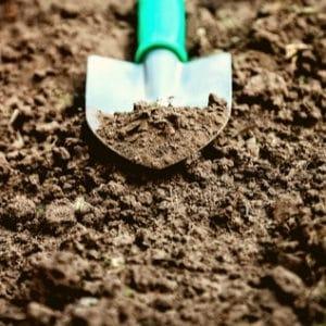 trowel for garden work