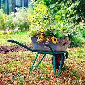 wheelbarrow for garden work