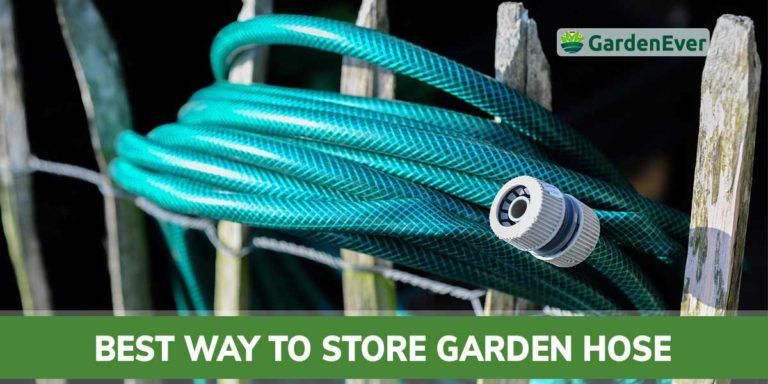 best way to store garden hose