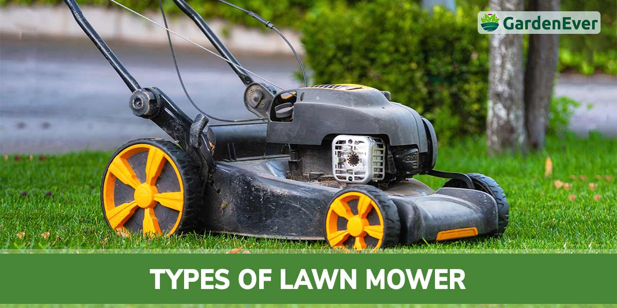 types of lawn mower