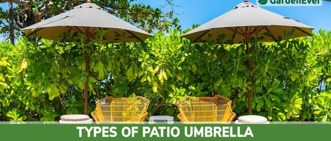 types of patio umbrella