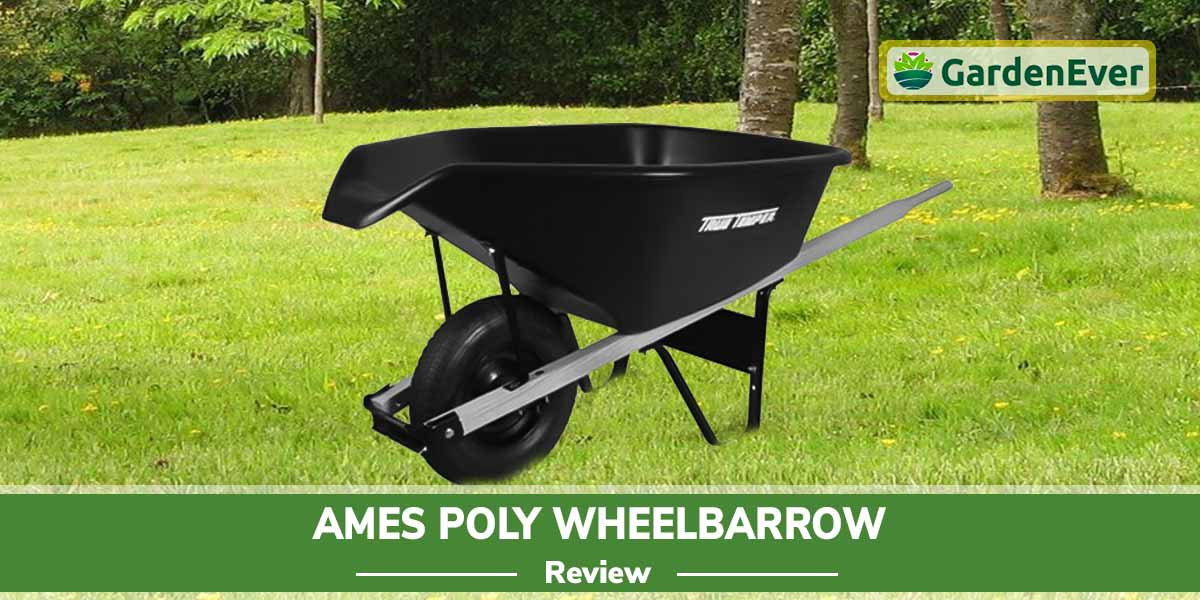 Ames Poly Wheelbarrow Review