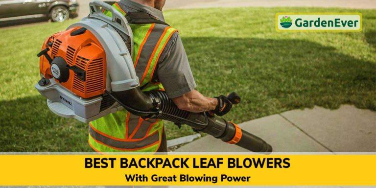 Best Backpack Leaf Blowers