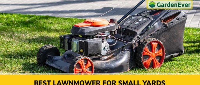 Best Lawnmower for Small Yards