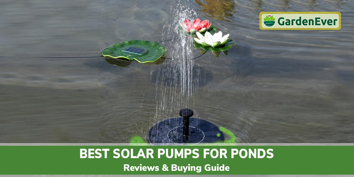 Best Solar Pumps for Ponds