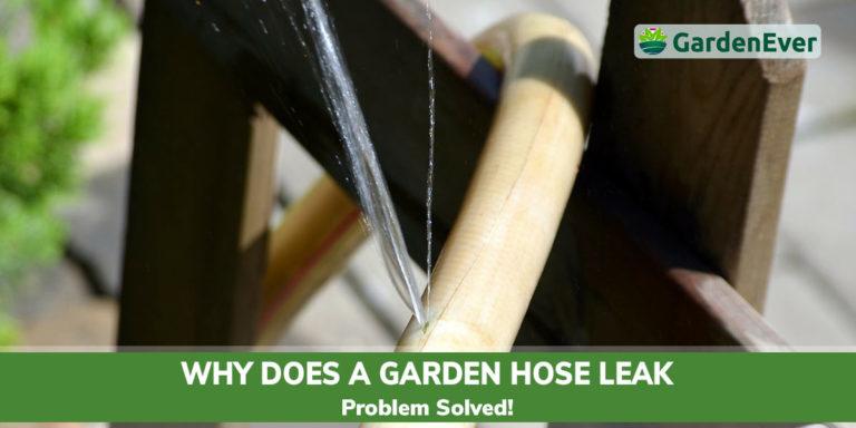 why does garden hose leak