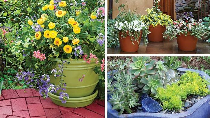 how to make a container garden