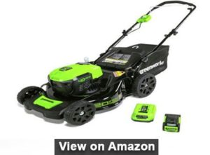"GreenWorks G-MAX 20"""