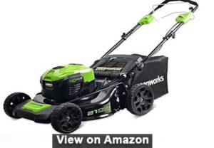 Greenworks 20-Inch 12 Amp