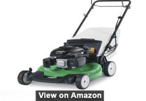 Lawn-Boy 17732 21-Inch