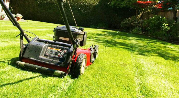 Best Lawnmower for Small Yards 2019