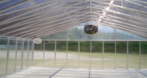 Ventilation for greenhouse