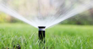 watering for lawn maintainance