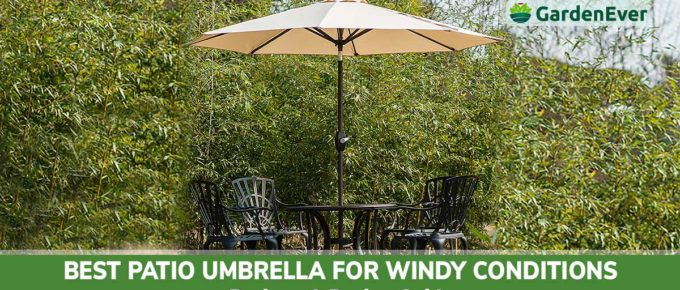 Best Patio Umbrella for windy condition