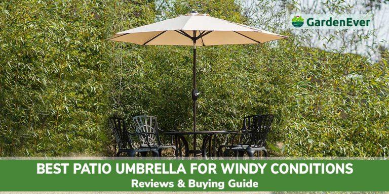 Best patio umbrella for wind