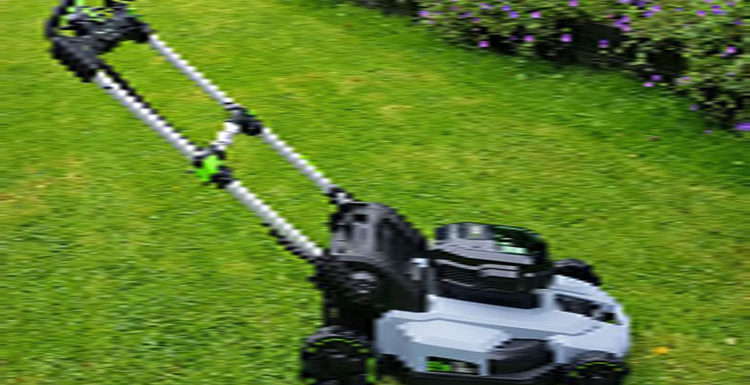 Types of Lawn Mower: Everything You Should Know Before Buying a Lawn Mower