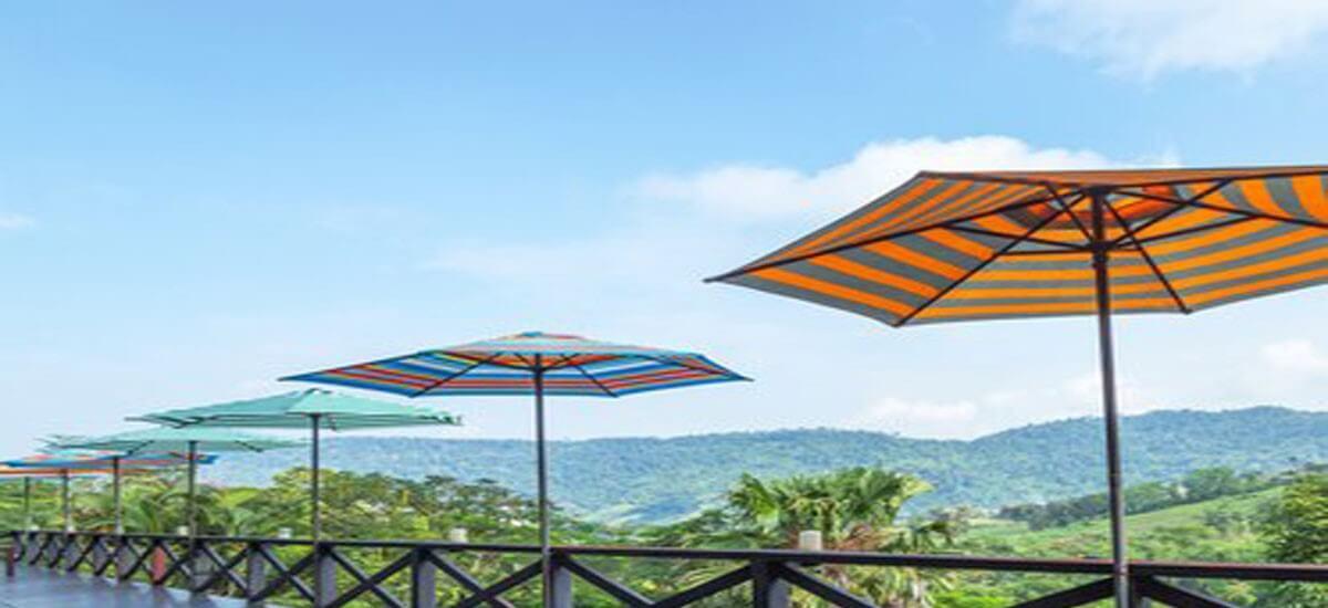 Patio umbrella colors