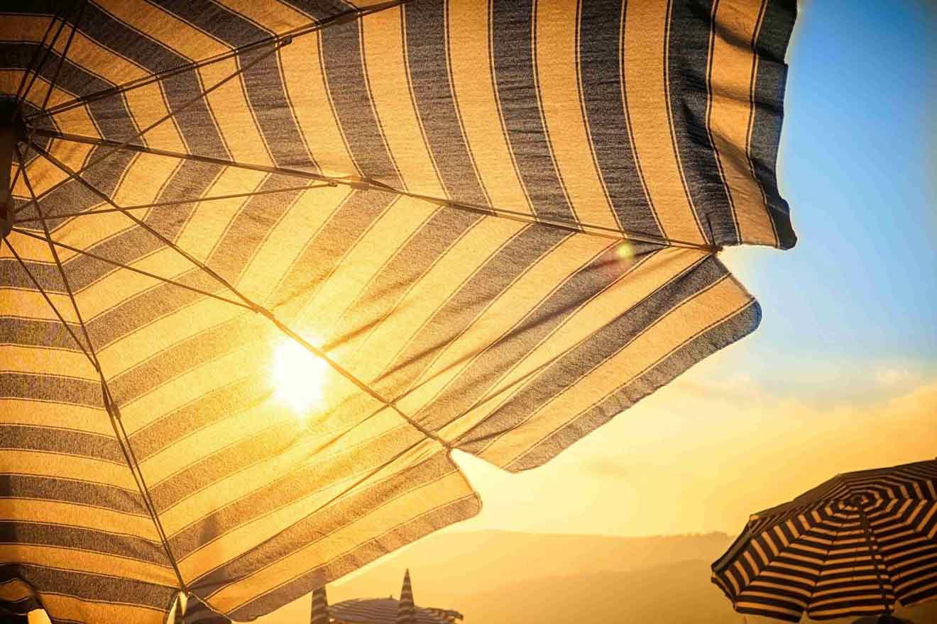 patio umbrella in sunlight