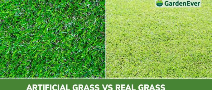 Artificial Grass vs real grass