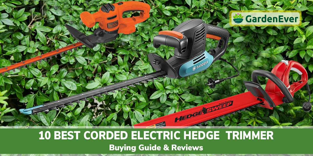 10 Best Corded Electric Hedge Trimmer of 2021 : Buying and Reviews