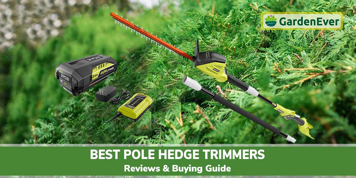 10 Best Pole Hedge Trimmers of 2021 – Long Reach Hedge Trimmer Reviews & Buying Guide
