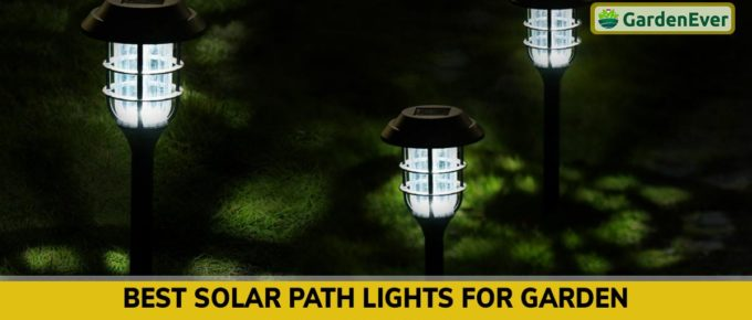 Best Solar Path Lights For Garden