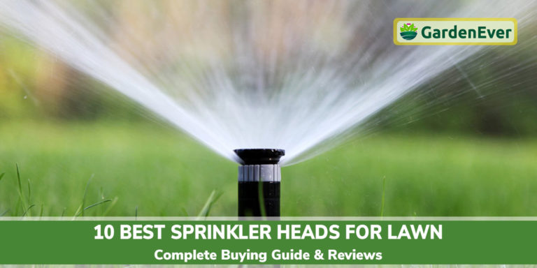 est Sprinkler Heads for Lawn