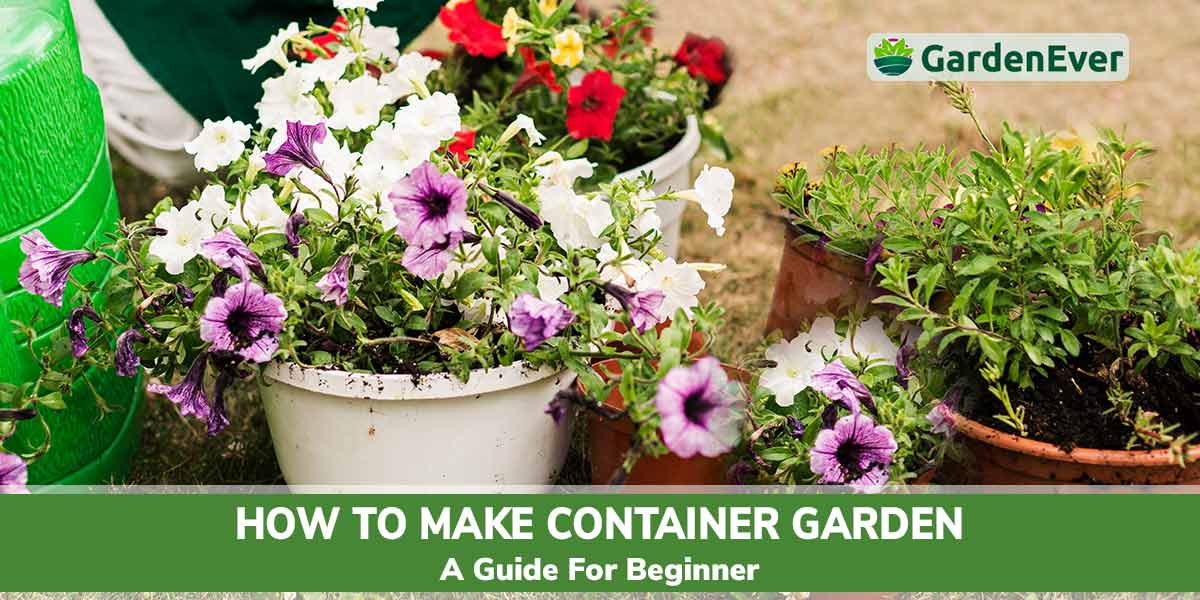 How to make container garden
