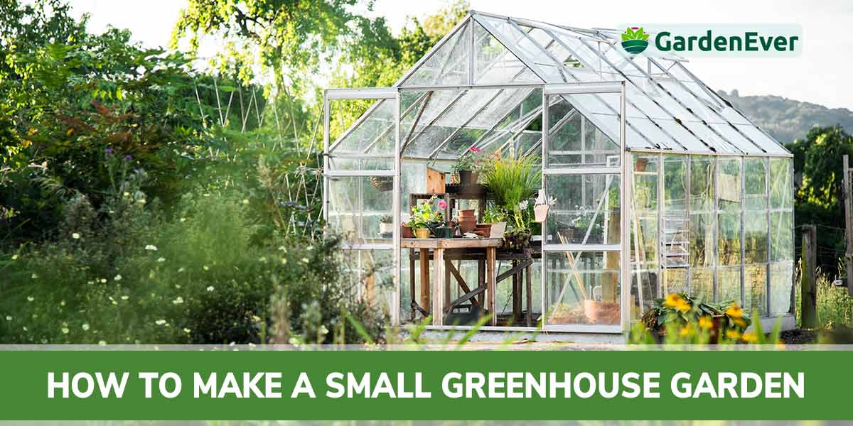 How to Make a Small Greenhouse Garden : 12 Actionable Steps for You
