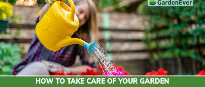 how to take care care of garden