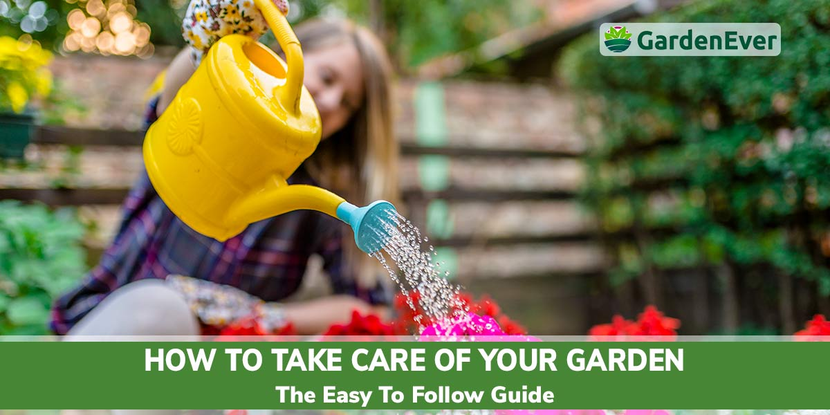 How To Take Care Of A Garden The Easy To Follow Guide