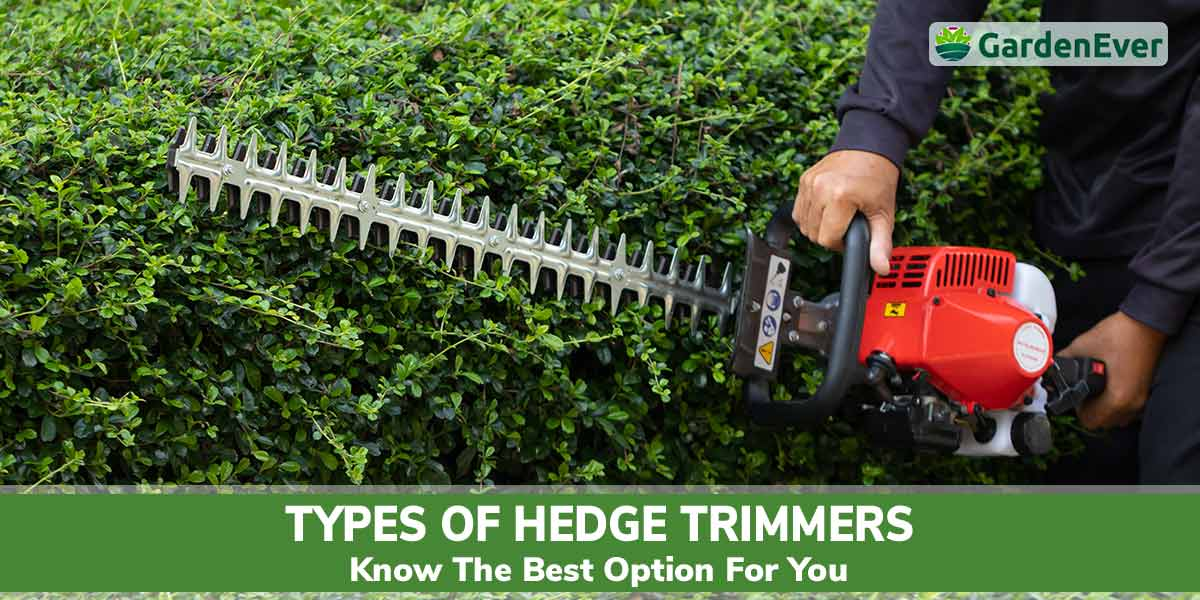 Types of hedge trimmer