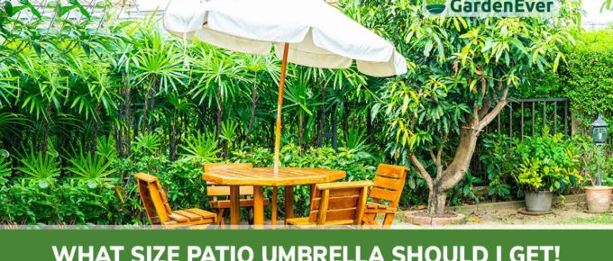 what patio umbrella should I get