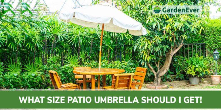 what patio umbrella should I get