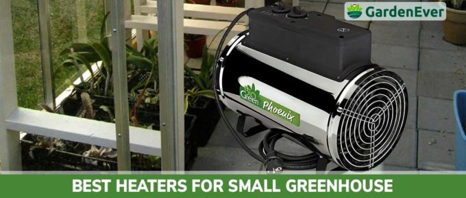 Best Heaters for Small Greenhouse