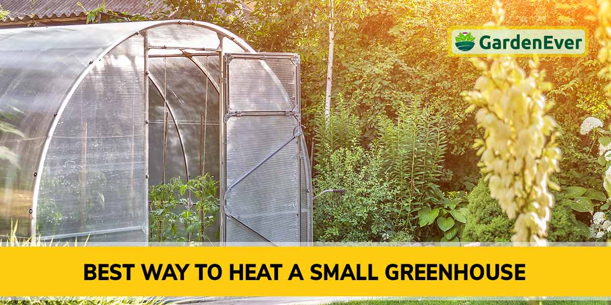 Best Way to Heat a Small Greenhouse
