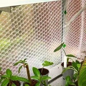 bubble wrap insulator in greenhouse