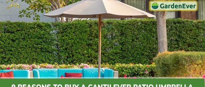 top Reasons to Buy a Cantilever Patio Umbrella