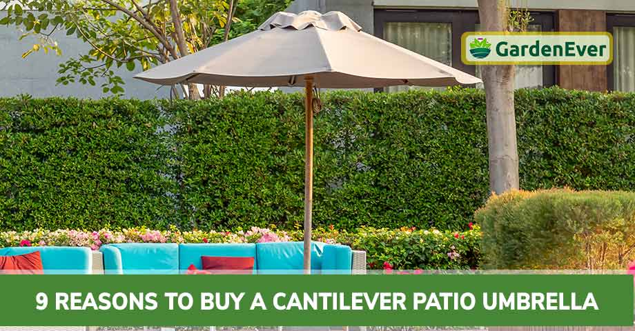 top Reasons to Buy a Cantilever Patio Umbrella