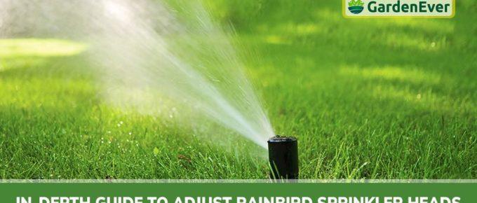 how to adjust Rain Bird Sprinkler Heads