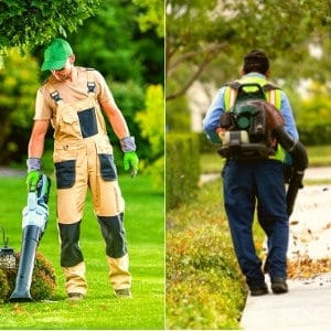 handheld vs backpack leaf blower