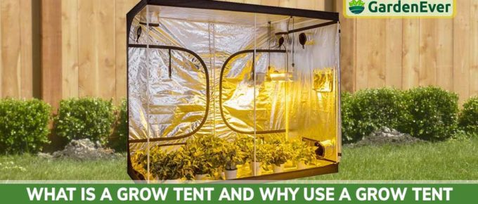 Why Use A Grow Tent