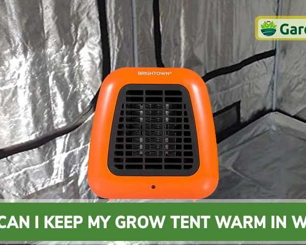 How Can I Keep My Grow Tent Warm in Winter