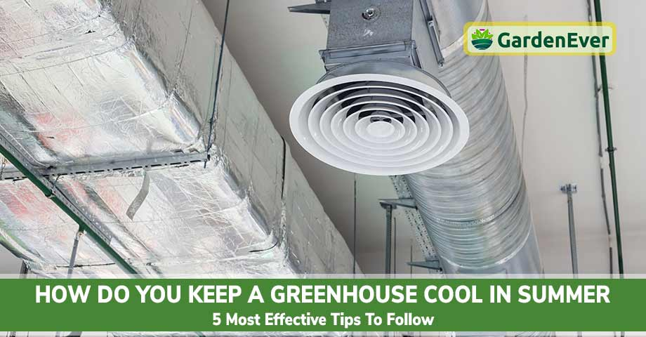 Keep a Greenhouse Cool in Summer