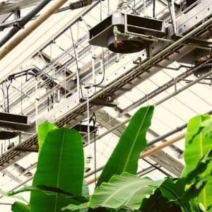 ventilation in greenhouse