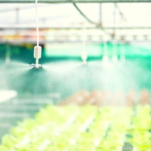water spraying and nebulizationin greenhouse